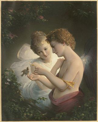 Eros Versa parfum geurolie voor Melts & Kaarsen