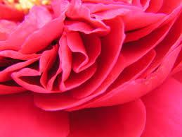 Aanbieding Valentijn Please Love parfum geurolie voor soja was Melts, Kaarsen en Zeep