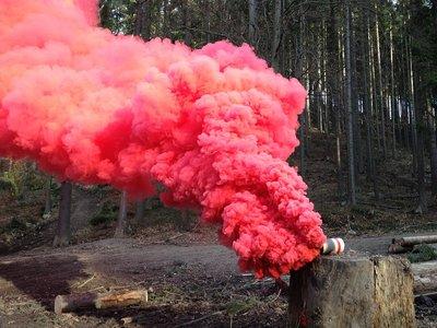 La Vie & Rosé Bomb parfum geurolie voor Melts , Kaarsen en Zeep