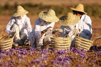Aanbieding Treasure Of Spice parfum geurolie voor melts, Kaarsen & Zeep