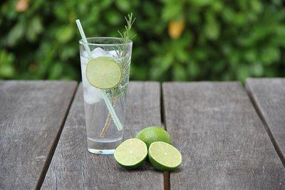 Gin & Tonic parfum geurolie voor Melts en Kaarsen
