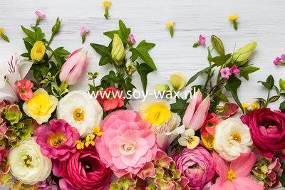 Rozen Ritueel parfum geurolie voor Melts & Kaarsen