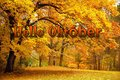 Oktober-Mystery-parfum-geurolie-voor-Melts-Kaarsen