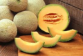 Meloen Cantaloupe
